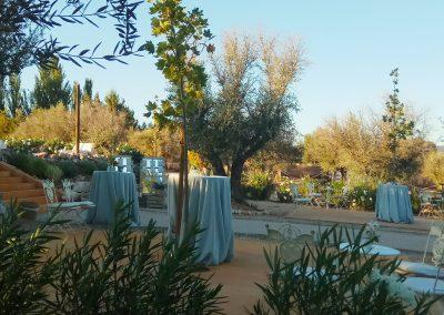 Zona de aperitivo en finca de bodas campo y olivo, muestra como será el aperitivo